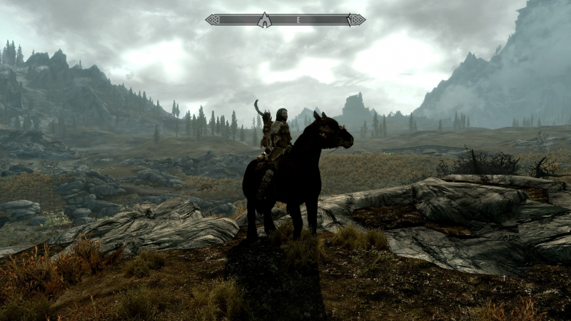 Shortly after this picture was taken, the horse was tragically killed by a Dragon.