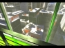 MirrorsEdge2009012620450942.jpg