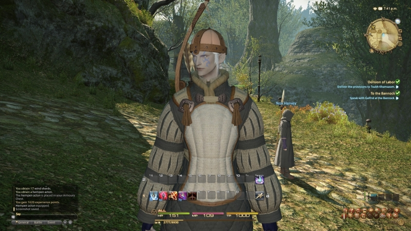 Looking like an idiot because low level? MMO. Looking awesome despite that? Final Fantasy!
